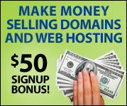 Make Money Selling Domains & Web Hosting