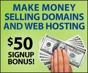 Make Money Selling Domains & Web Hosting